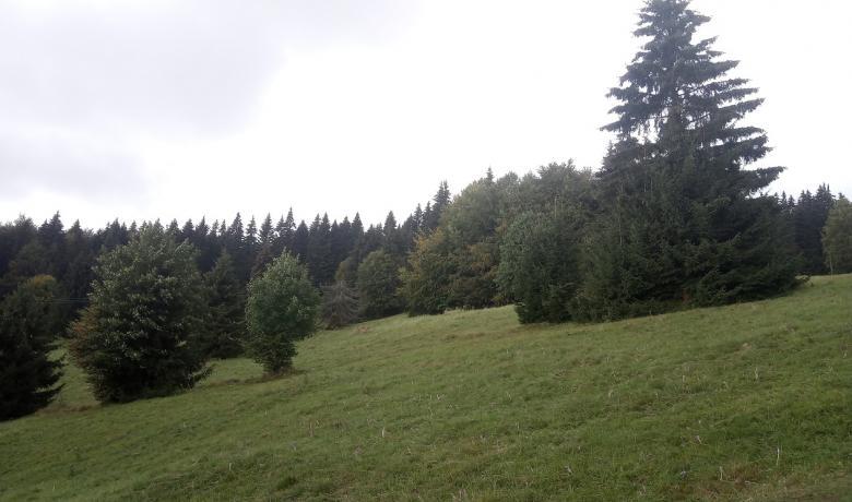 Felhőben a Polyána-csúcs és a Bystré vízesés3