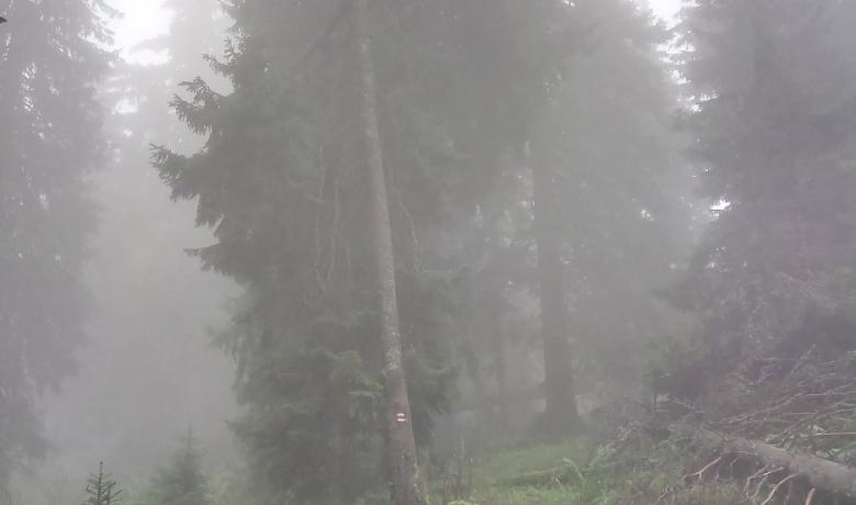 Felhőben a Polyána-csúcs és a Bystré vízesés12